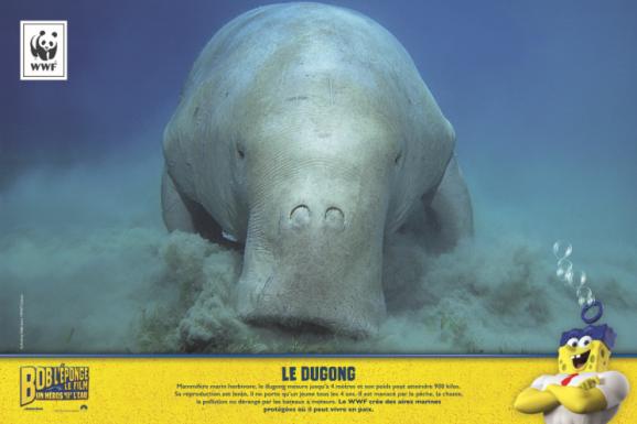 Exposition Aqurium de Paris - Dugong WWWF Bob l'éponge