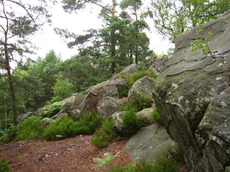 La vall e de chevreuse un parc naturel d couvrir v lo for Parc naturel yvelines